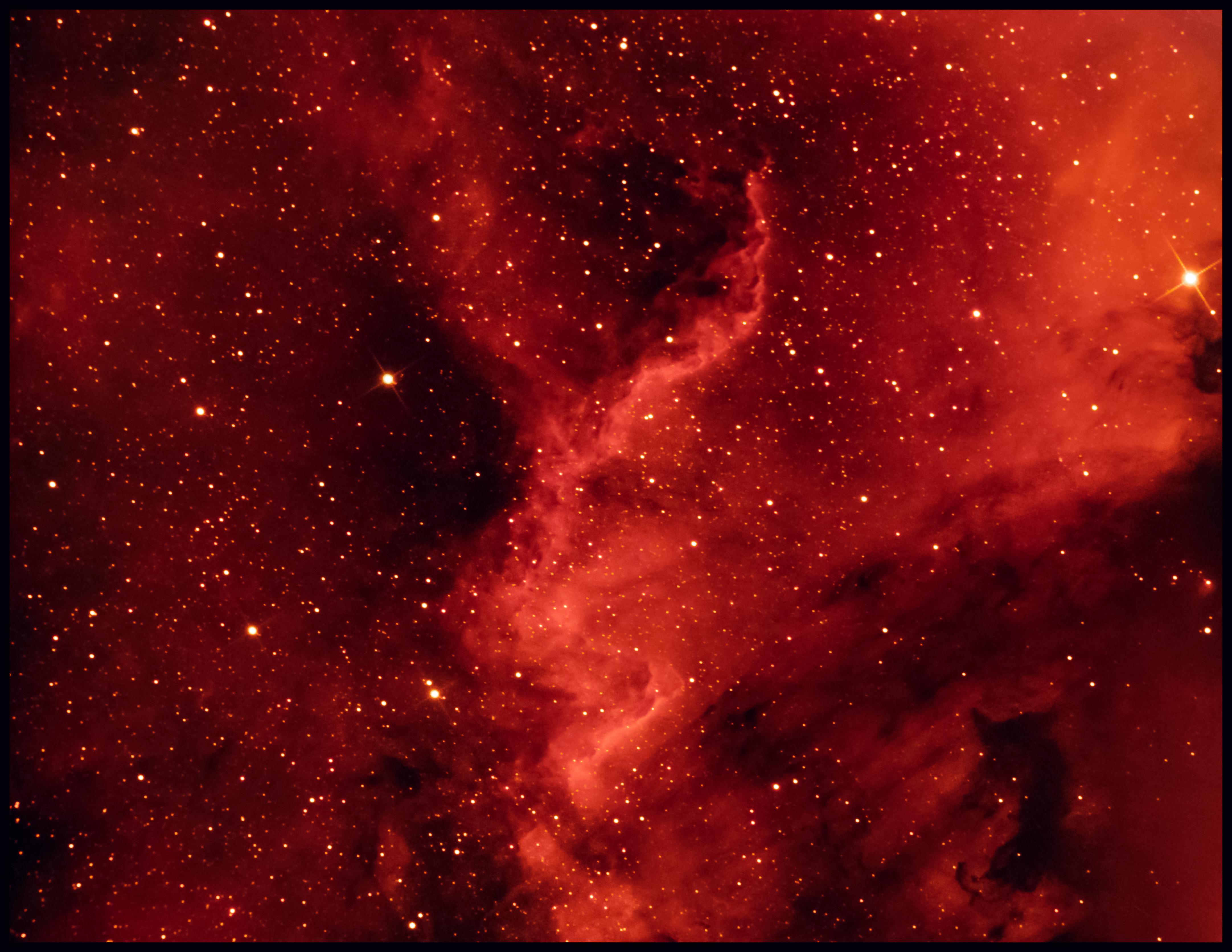 NGC7000 Nordamerika Nebel Thomas Schiffer
